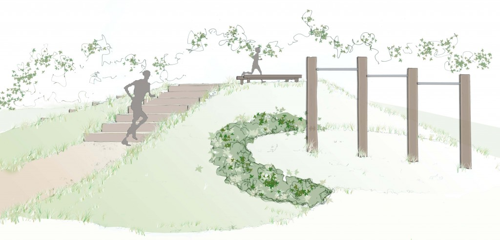 Landscape drawing for the fitness trail